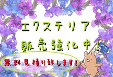 5月 目玉情報アイキャッチ